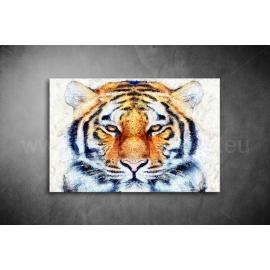 Tigris Vászonkép 050