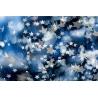 Csillagok Vászonkép 093