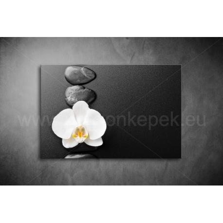 Orchidea Vászonkép 002