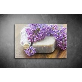 Orgona szappan Vászonkép 033