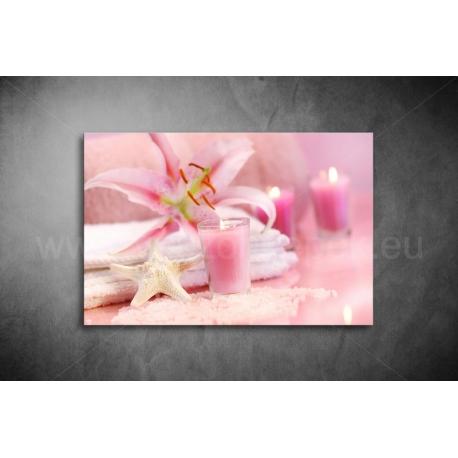 Rózsaszín Vászonkép 038