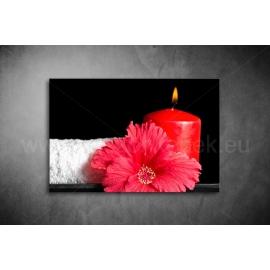 Kínai Rózsa Vászonkép 051
