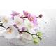 Orchidea Vászonkép 013