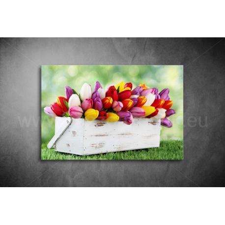 Tulipános Vászonkép 018