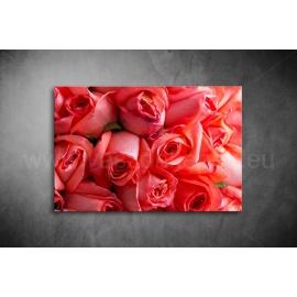 Piros Rózsák Vászonkép 021