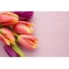 Tulipános Vászonkép 027