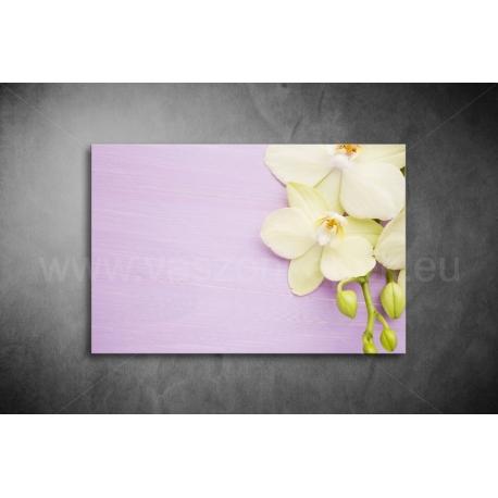Orchidea Vászonkép 028