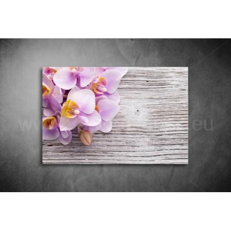 Orchidea Vászonkép 029