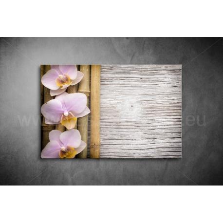 Orchidea Vászonkép 030