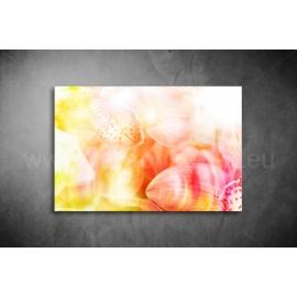 Orchidea Vászonkép 038