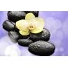 Orchidea Vászonkép 050