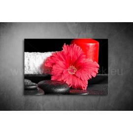 Kínai Rózsa Vászonkép 055