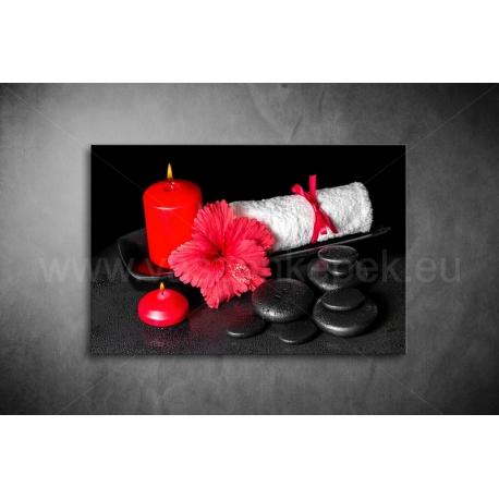 Kínai Rózsa Vászonkép 056