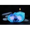 Kék Orchidea Vászonkép 066