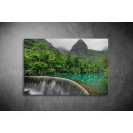 Esőerdő Vászonkép 003