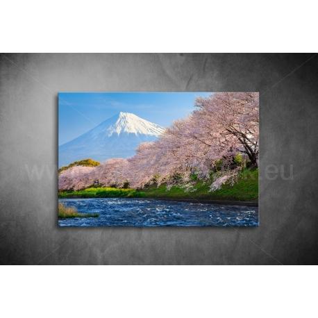 Fuji Vászonkép 069