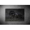 Fekete Ló Vászonkép 022
