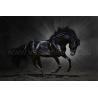 Fekete Ló Vászonkép 026
