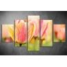 Többrészes Tulipánok vászonkép 001 - (választható formák)