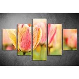 Többrészes Tulipán vászonkép 001 - (választható formák)