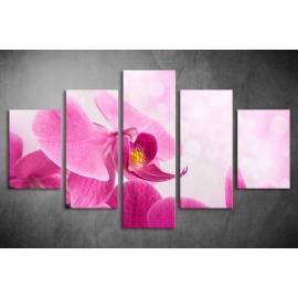 Többrészes Orchidea vászonkép 002 - (választható formák)