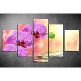 Többrészes Orchidea vászonkép 006 - (választható formák)