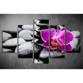 Többrészes Orchidea, Lávakövek vászonkép 007 - (választható formák)