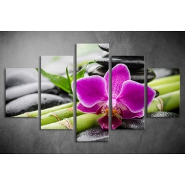 Többrészes Orchidea vászonkép 008 - (választható formák)