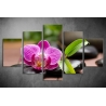 Többrészes Orchidea vászonkép 011 - (választható formák)