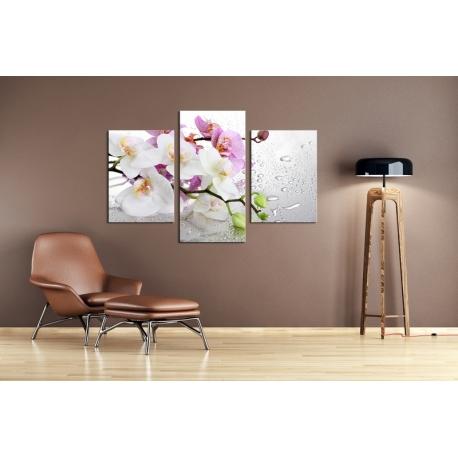 Többrészes Orchidea vászonkép 013 - (választható formák)