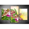 Többrészes Orchidea vászonkép 024 - (választható formák)
