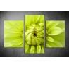 Többrészes Virág vászonkép 035 - (választható formák)