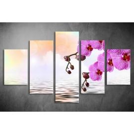 Többrészes Orchidea vászonkép 040 - (választható formák)