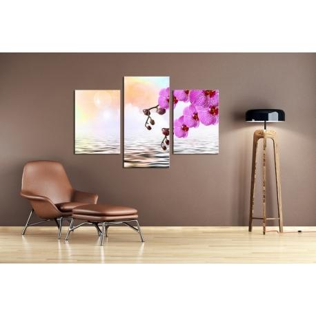 Többrészes Orchidea vászonkép 040 -(választható formák)