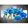Többrészes Kék Orchidea vászonkép 041 - (választható formák)