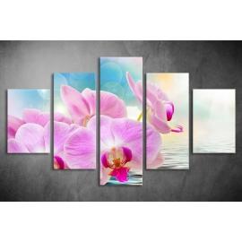 Többrészes Orchidea vászonkép 043 - (választható formák)
