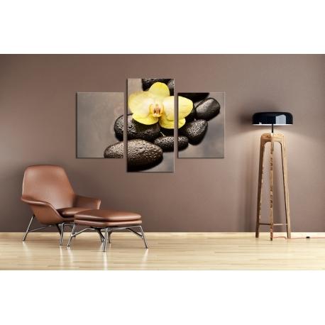 Többrészes Orchidea, Lávakövek vászonkép 049 - (választható formák)