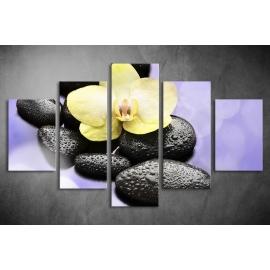 Többrészes Orchidea, Lávakövek vászonkép 050 - (választható formák)