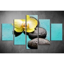 Többrészes Orchidea, Lávakövek vászonkép 051 - (választható formák)