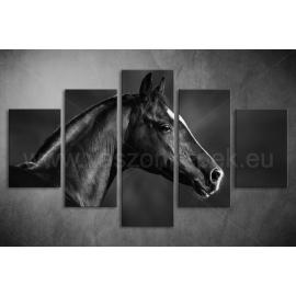 Többrészes Fekete Ló vászonkép 005 - (választható formák)