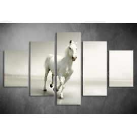 Többrészes Fehér Ló vászonkép 011 - (választható formák)