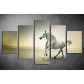 Többrészes Fehér Ló vászonkép 012 - (választható formák)