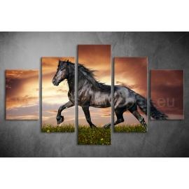 Többrészes Fekete Ló vászonkép 014 - (választható formák)