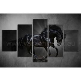 Többrészes Fekete Ló vászonkép 026 - (választható formák)