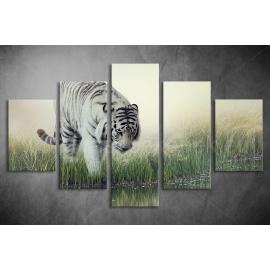 Többrészes Fehér Tigris vászonkép 032 - (választható formák)