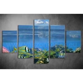Többrészes Korallzátony vászonkép 046 - (választható formák)