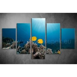 Többrészes Halak, Korallok vászonkép 051 - (választható formák)