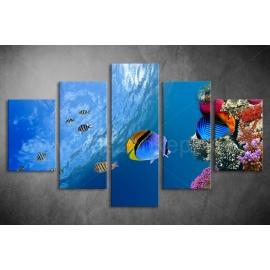 Többrészes Halak, Korallok vászonkép 052 - (választható formák)