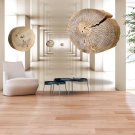 Fotótapéta Flying Discs of Wood