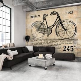 Fotótapéta Old School Bicycle